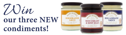 Competition: Be amongst the first to try our new condiments